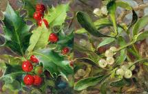 Holly / Mistletoe small note cards by Anne Cotterill Flower Art