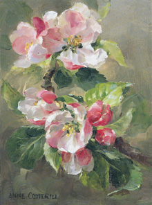 Small Rectangle B-Series fine art cards taken from the floral paintings of Anne Cotterill