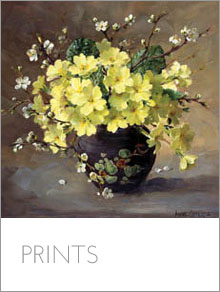 Fine Art Flower Prints taken from the original paintings of Anne Cotterill